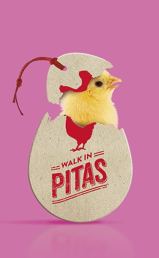 Creatividad, diseño y producción de piezas para los canales sociales de Walk in Pitas.